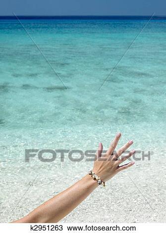 gorda hand