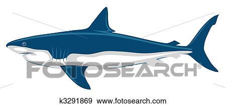 剪贴画 - 鲨鱼图片