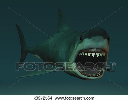 Dessins grand requin blanc pr t bite k3372564 recherche de clip arts d 39 illustrations - Dessin de grand requin blanc ...