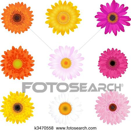 Clip Art Daisy Clip Art daisy clip art illustrations 18897 clipart eps vector colorful daisies