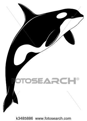 clip art of killer whale tattoo k3485886 search clipart rh fotosearch com killer whale clip art free Cute Whale Clip Art
