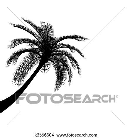 Dessins noir blanc palmier k3556604 recherche de - Palmier dessin ...