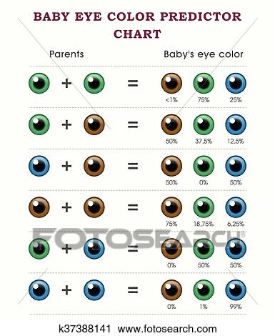 Baby Eye Color Predictor Chart Template