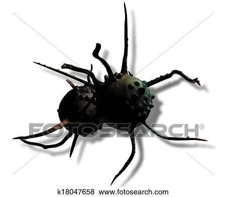 3d绘画昆虫步骤图
