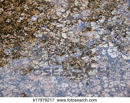 image ciment mouill depuis a frais douche pluie k17979217 recherchez des photos des. Black Bedroom Furniture Sets. Home Design Ideas