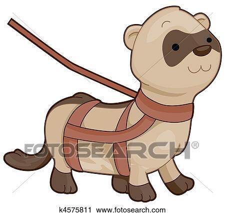 clipart of cute ferret k4575811 search clip art illustration rh fotosearch com White Ferret Clip Art and Black White Ferret Clip Art and Black