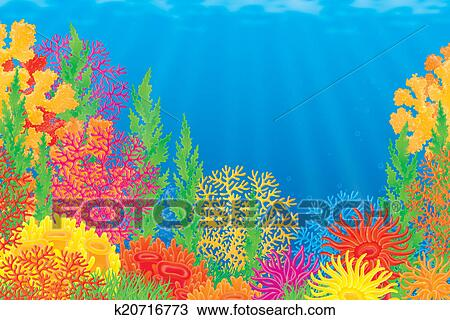 drawings of corals