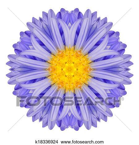 Drawings of Blue Chrysanthemum Mandala Flower. Kaleidoscope of ...