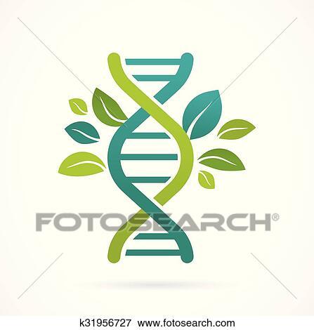 剪贴画 - dna, 基因, 图标, -, 树, 带, 绿色的树叶.图片