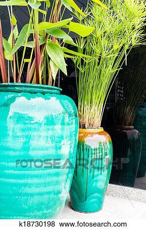 Billeder   grønne, planter, ind, farverig, krukker k18730198   søg ...