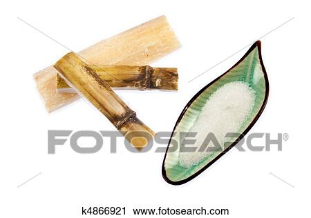 Slices of raw sugar cane (saccharum) with a dish of refined sugar ...