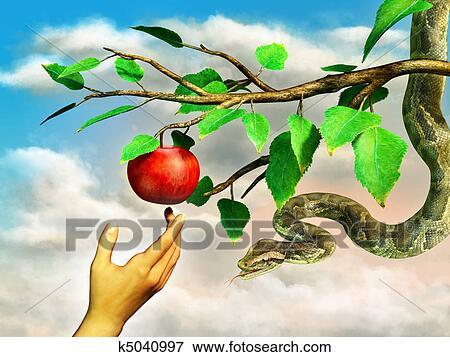 Arquivos de Ilustração - maçã, tentação. Fotosearch - Busca de Clip Art Vetorizado EPS, Desenhos, Impressões Decorativas, e Vetores Gráficos