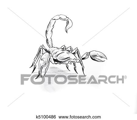 510k template - banque d 39 images tatouage art croquis de a scorpion