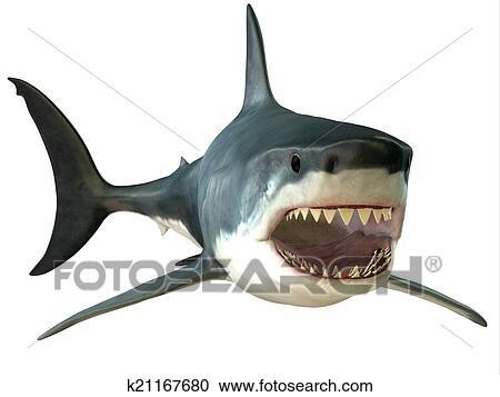 Banque d 39 illustrations grand requin blanc bouche k21167680 recherchez des cliparts des - Dessin de grand requin blanc ...