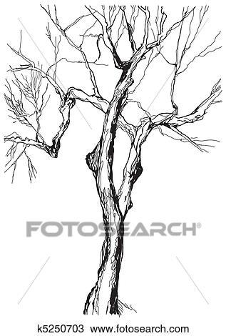 手绘图 - 老树
