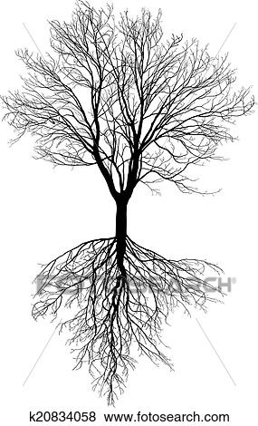 Clip Art of Bare tree with roots k20834058 - Search ...
