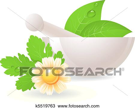 clipart of mortar with herbs and camomile k5519763 search clip rh fotosearch com Vintage Herb Clip Art Herb Garden Clip Art