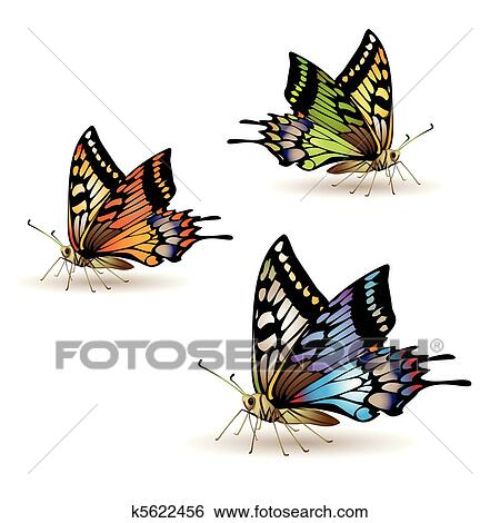 剪贴画 蝴蝶, 收集