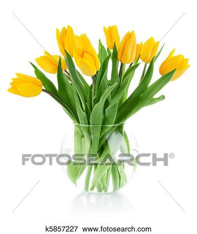 bild - gelbe tulpe, blumen, in, glas vase k5857227 - suche, Best garten ideen