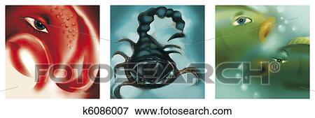 banque d 39 illustrations cancer scorpion et poissons signes zodiaque k6086007 recherche de. Black Bedroom Furniture Sets. Home Design Ideas