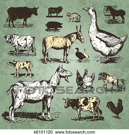 Set Of Retro Farm Animal Illustrations Scalable And Editable Vector