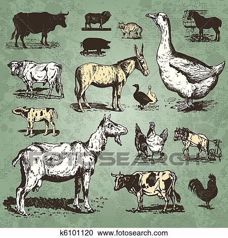 Clipart of farm animals vintage set (vector) k6101120 ...
