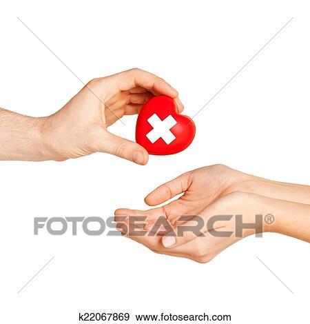 Stock Fotograf - hand, geben, herz, mit, rotes kreuz, symbol ... | {Rotes kreuz symbol 43}