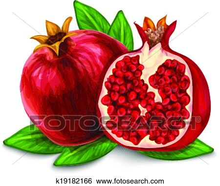 clip art of pomegranate isolated poster or emblem k19182166 search rh fotosearch com pomegranate clipart pomegranate tree clipart