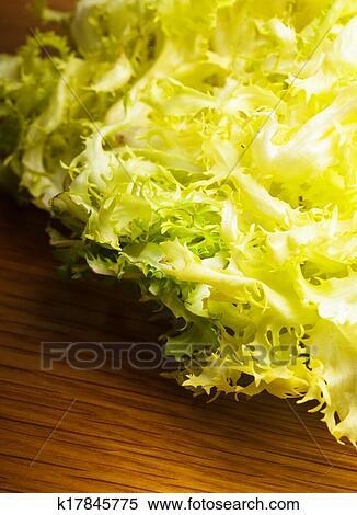 Фризе листья салата фото