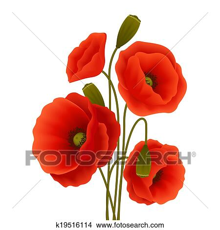 Clipart of poppy flower poster k19516114 search clip art bunch of red romantic blooming poppy flowers isolated vector illustration mightylinksfo
