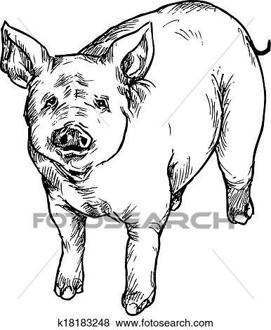 剪贴画 - 手, 画, 猪图片