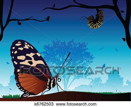 剪贴画 蝴蝶, 世界