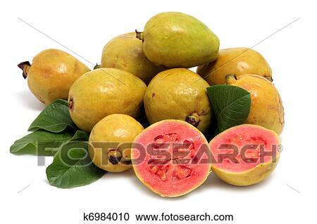 Banques de photographies frais goyave fruit feuilles blanc fond k6984010 recherchez - Feuille de goyave acheter ...