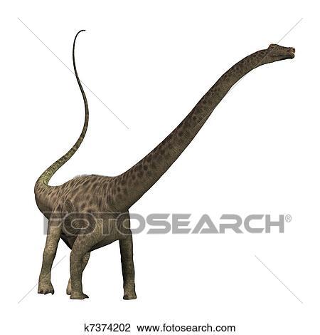 Clipart diplodocus k7374202 recherchez des cliparts des illustrations des dessins et des - Dessin de diplodocus ...