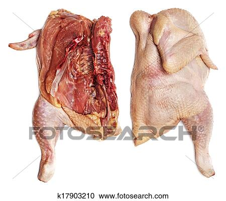 Stock Photography Of Rotten Chicken K17903210 Search