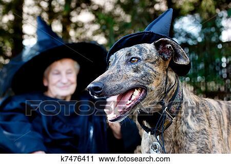 banques de photographies chien et personne agee dans sorci re d guisement k7476411. Black Bedroom Furniture Sets. Home Design Ideas