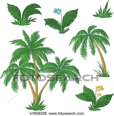 Clip Art of Palm trees, flowers and grass k7608339 ...