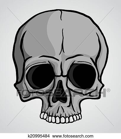 drawing human skull fotosearch search clip art illustrations wall posters and