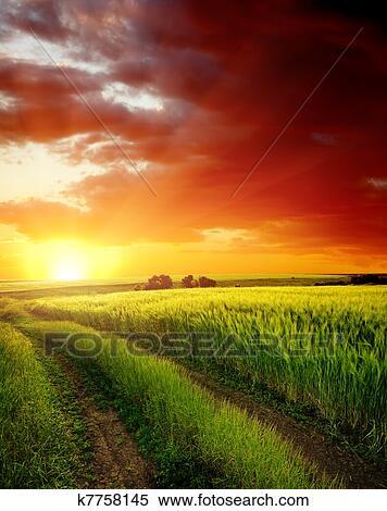 Archivio immagini tramonto rosso sopra strada rurale for Esterno orecchio rosso