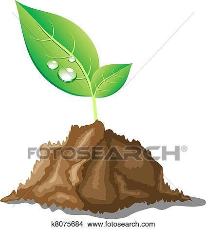 Clipart of beautiful young sprout k8075684 search clip for Boden cartoon