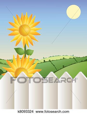 剪贴画 向日葵, 带, 栅栏