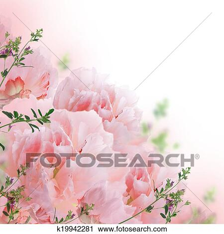 Roses Floral Background Floral Background of Roses And