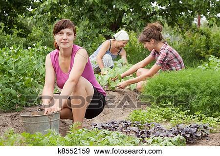 Голые в огороде фото 68929 фотография
