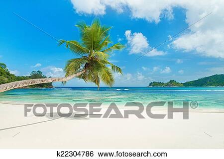 Archivio di immagini spiaggia tropicale baie lazare a for Disegni di casa sulla spiaggia tropicale