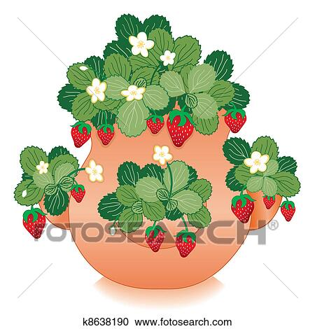 clipart of strawberries in clay strawberry jar k8638190