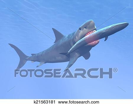 shark eating fish clip art � cliparts