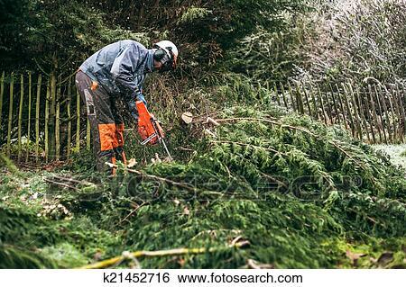 Banque d 39 images professionnel jardinier utilisation for Jardinier professionnel