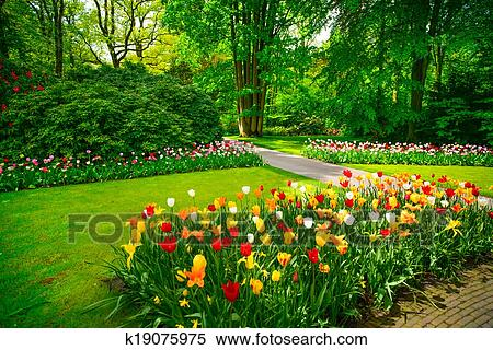 stock bild kleingarten in keukenhof tulpenbl te blumen und b ume niederlande k19075975. Black Bedroom Furniture Sets. Home Design Ideas