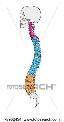 Pressione in un petto a osteochondrosis