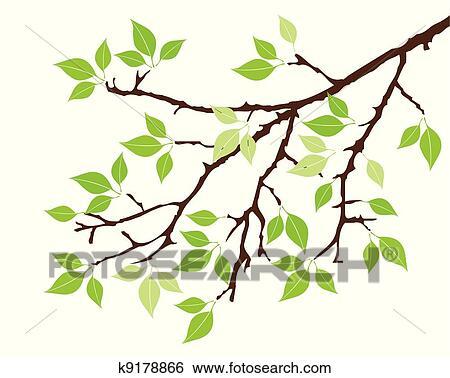剪贴画 - 树枝图片